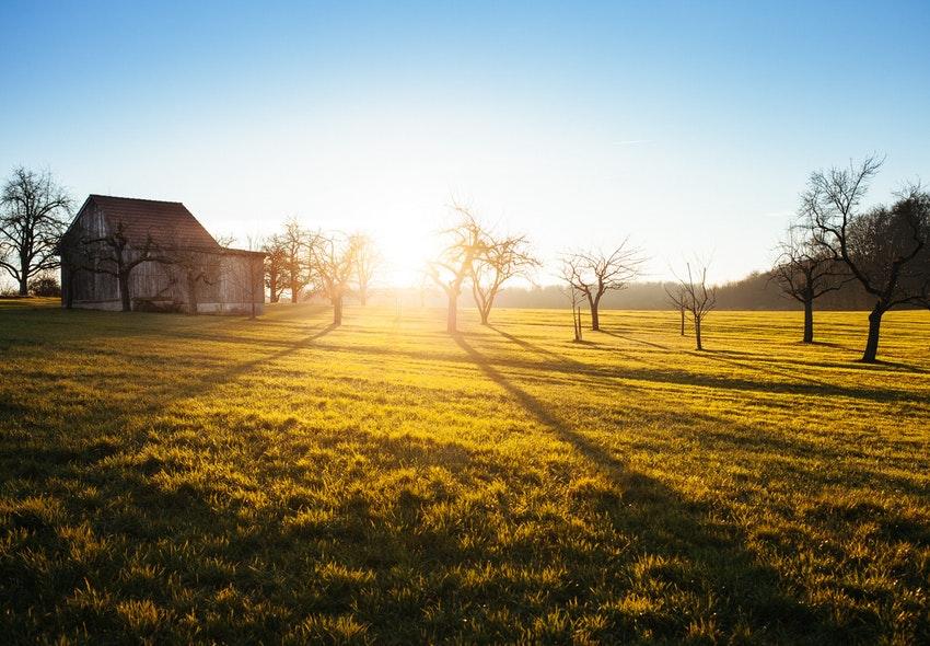 ¿Cuánto gana un Administrador Rural en 2019?