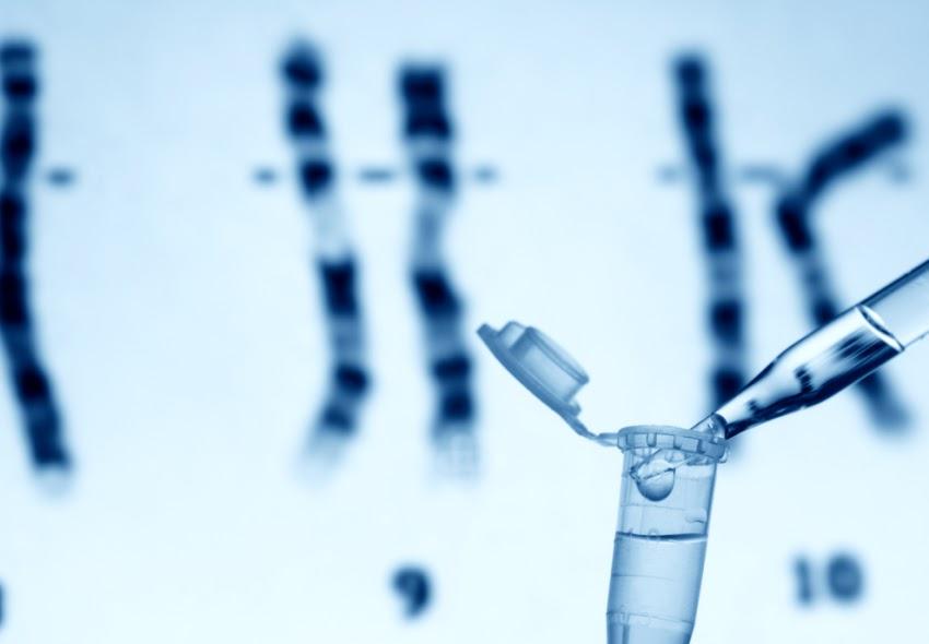 ¿Cuánto gana un Licenciado en Genética en 2019?