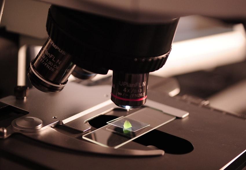 ¿Cuánto gana un Microbiólogo en 2019?