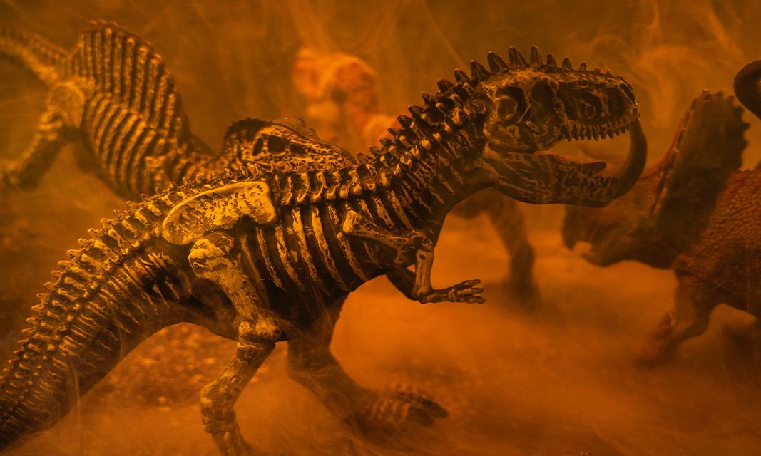 ¿Cuánto gana un Técnico en Paleontología en 2021?